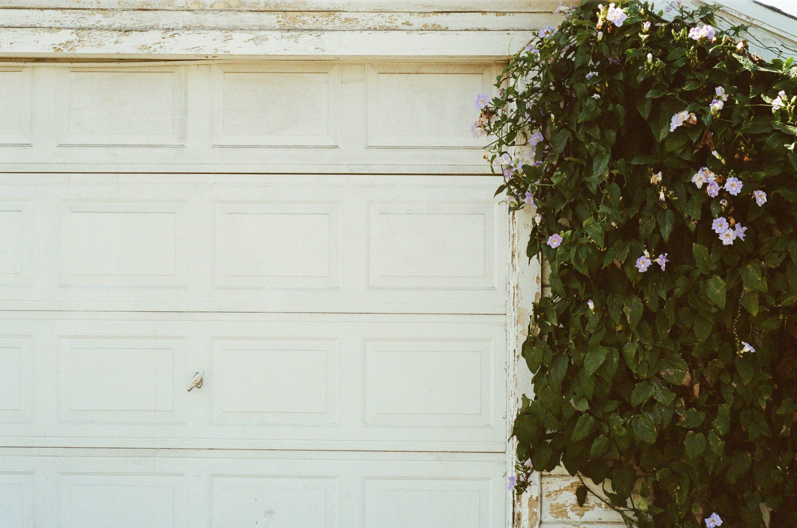 A garage door next to a tree.